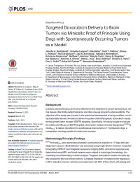 Targeted Doxorubicin Delivery to Brain Tumors via Minicells